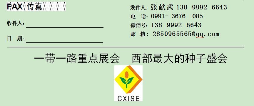 2020第11届中国新疆