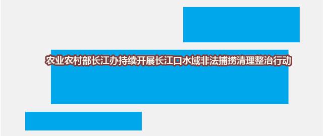 农业农村部长江办持续开展长江口水域非法捕捞清理整治行动
