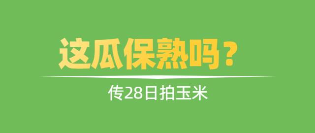【独家】传28日拍玉米,这瓜保熟吗?