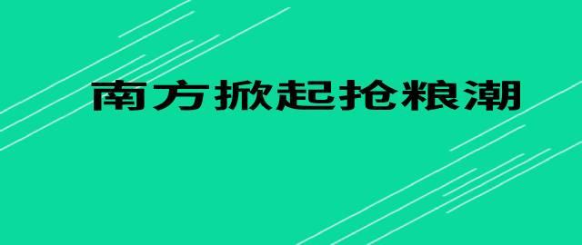 【小麦独家】南方掀起抢粮潮