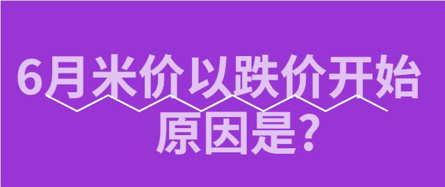 【独家】6月米价以跌价开始 原因是?