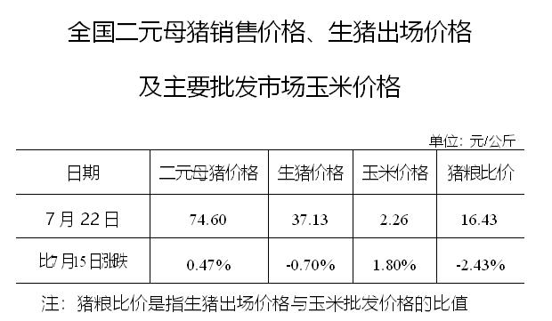 全国二元母猪销售价格、生猪出场价格及主要批发市场玉米价格(7月22日)