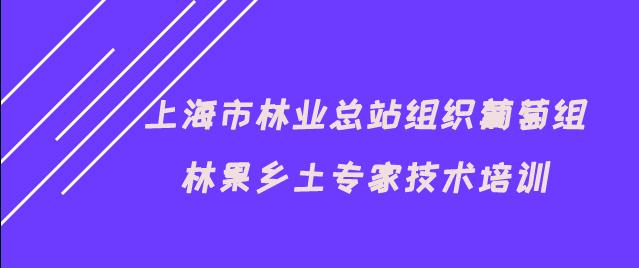 上海市林业总站组织葡萄组林果乡土专家技术培训