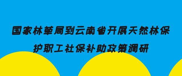 国家林草局到云南省开展天然林保护职工社保补助政策调研