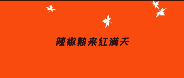 辣椒熟来红满天——山东乐陵市农业农村局整合涉农资金助力辣椒产业蓬勃发展