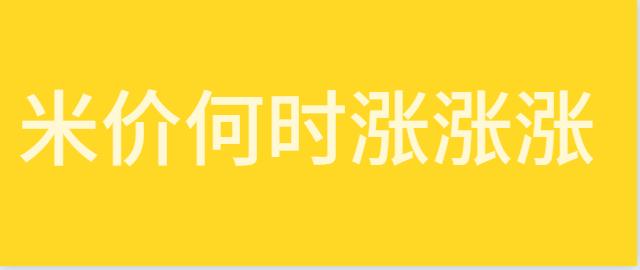 【独家】米价何时迎来涨涨涨