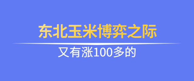 【独家】东北玉米博弈之际,又有涨100多的。