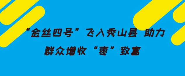 金丝四号飞入秀山县 助力群众增收枣致富