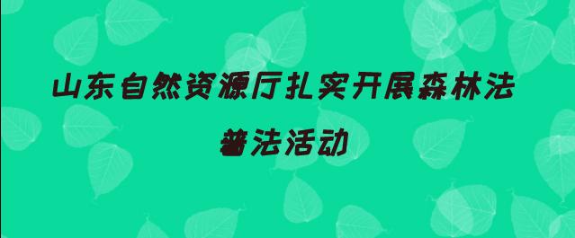 山东自然资源厅扎实开展森林法普法活动