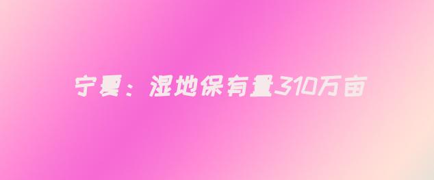 宁夏:湿地保有量310万亩