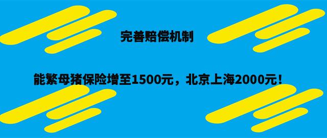 农业农村部:完善赔偿机制 能繁母猪保险增至1500元,北京上海2000元!