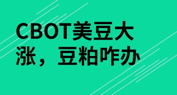 【独家】CBOT美豆大涨豆粕咋办?
