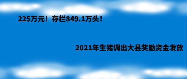 225万元!存栏849.1万头!2021年生猪调出大县奖励资金发放