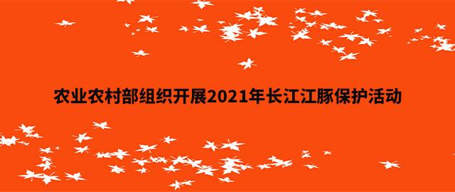 农业农村部组织开展2021年长江江豚保护活动