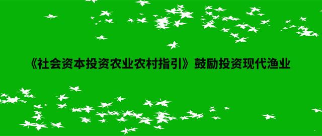 《社会资本投资农业农村指引》鼓励投资现代渔业