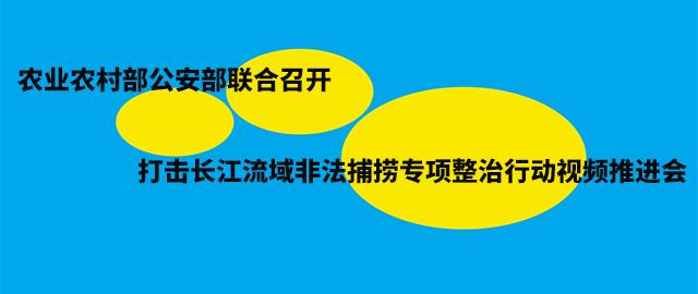 农业农村部公安部联合召开打击长江流域非法捕捞专项整治行动视频推进会