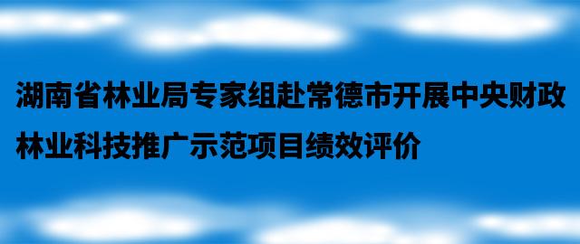 湖南省林业局专家组赴常德市开展中央财政林业科技推广示范项目绩效评价