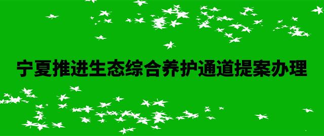 宁夏推进生态综合养护通道提案办理