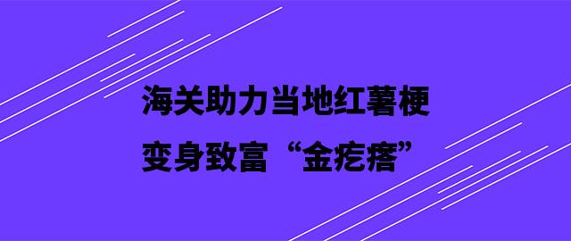 """海关助力当地红薯梗变身致富""""金疙瘩"""""""