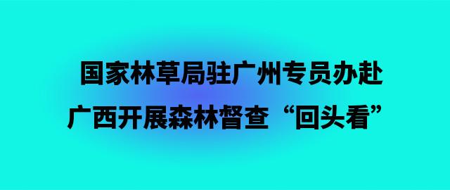 """国家林草局驻广州专员办赴广西开展森林督查""""回头看"""""""