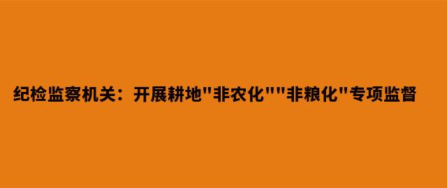 """纪检监察机关:开展耕地""""非农化""""""""非粮化""""专项监督"""