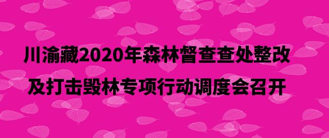 川渝藏2020年森林督查查处整改及打击毁林专项行动调度会召开