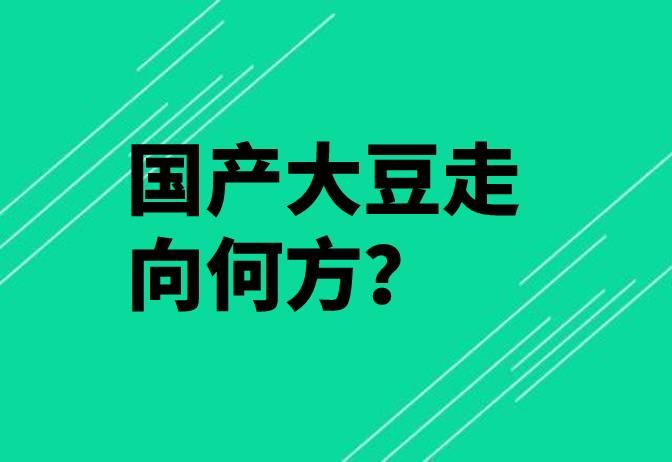【独家】国产大豆走向何方?