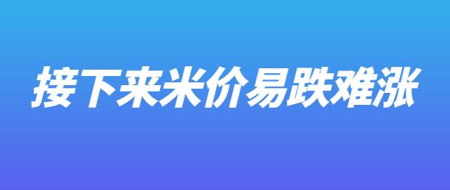 【独家】接下来米价易跌难涨