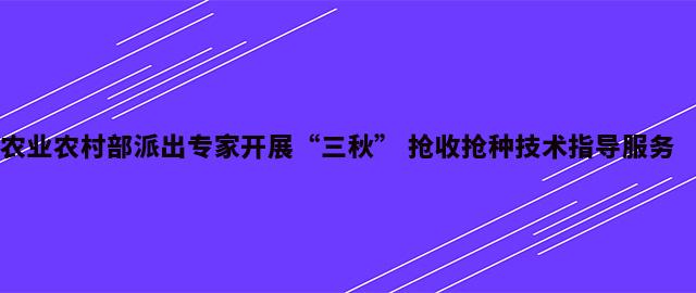 """农业农村部派出专家开展""""三秋"""" 抢收抢种技术指导服务"""