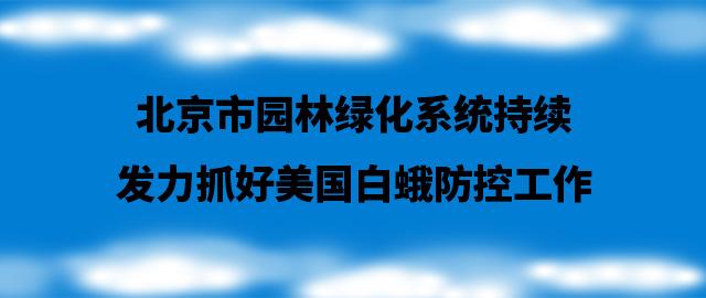 北京市园林绿化系统持续发力抓好美国白蛾防控工作