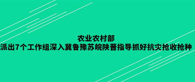 农业农村部派出7个工作组深入冀鲁豫苏皖陕晋指导抓好抗灾抢收抢种