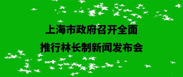 上海市政府召开全面推行林长制新闻发布会