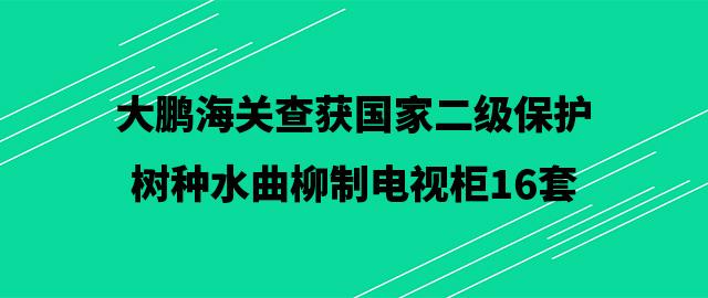 大鹏海关查获国家二级保护树种水曲柳制电视柜16套